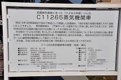 C1126504_2
