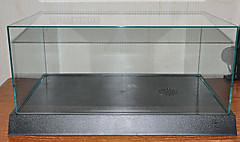 2000gt02
