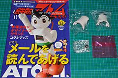 Atom252602