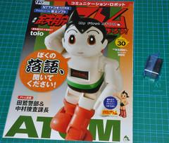 Atom293011