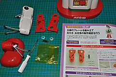 Atom495004