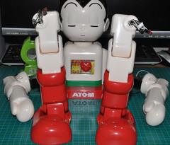 Atom495024