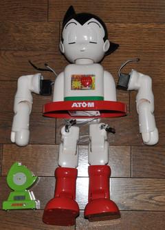 Atom495025